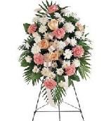 Sympathy flowers to Japan